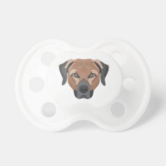 Illustration Dog Brown Labrador Dummy