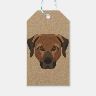 Illustration Dog Brown Labrador Gift Tags
