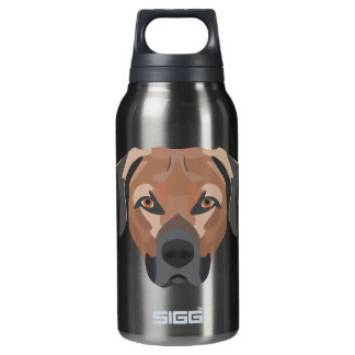 Illustration Dog Brown Labrador Insulated Water Bottle