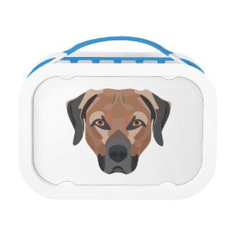 Illustration Dog Brown Labrador Lunch Box