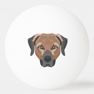 Illustration Dog Brown Labrador Ping Pong Ball