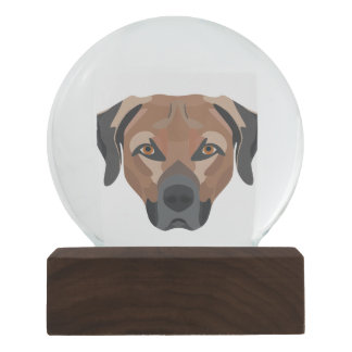 Illustration Dog Brown Labrador Snow Globe