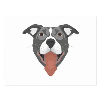 Illustration Dog Smiling Pitbull Postcard