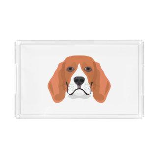 Illustration dogs face Beagle Acrylic Tray