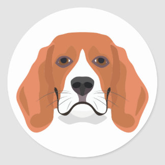 Illustration dogs face Beagle Classic Round Sticker