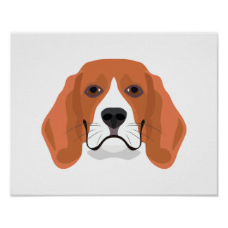 Illustration dogs face Beagle Poster