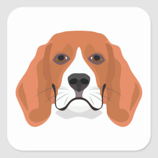 Illustration dogs face Beagle Square Sticker