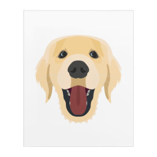 Illustration dogs face Golden Retriver Acrylic Wall Art