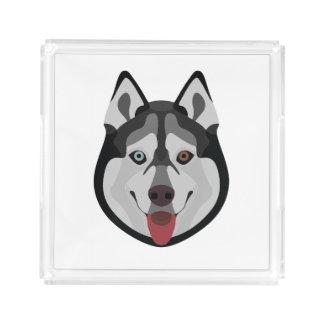 Illustration dogs face Siberian Husky Acrylic Tray