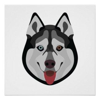 Illustration dogs face Siberian Husky Poster
