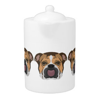 Illustration English Bulldog