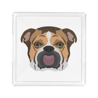 Illustration English Bulldog Acrylic Tray