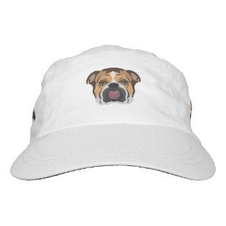 Illustration English Bulldog Hat