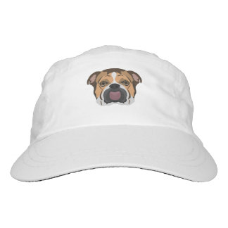 Illustration English Bulldog Hat