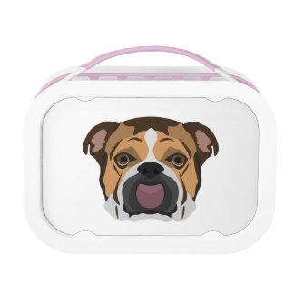 Illustration English Bulldog Lunch Box