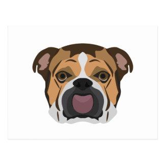 Illustration English Bulldog Postcard
