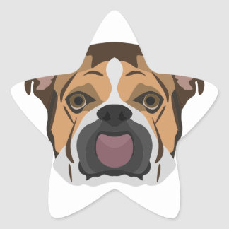 Illustration English Bulldog Star Sticker