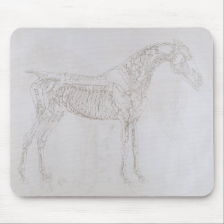 Illustration from 'The Anatomy of the Horse, inclu Mouse Pad