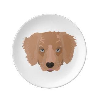 Illustration Golden Retriever Puppy Porcelain Plate