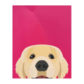 Illustration Golden Retriver with pink background Acrylic Wall Art