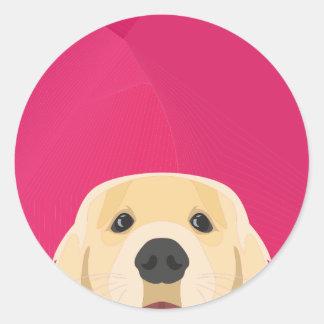 Illustration Golden Retriver with pink background Classic Round Sticker