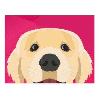 Illustration Golden Retriver with pink background Postcard