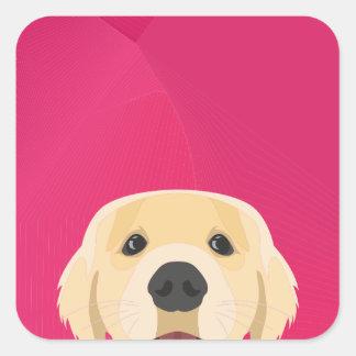 Illustration Golden Retriver with pink background Square Sticker