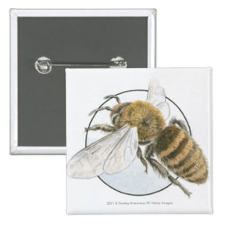 Illustration of European Honey Bee 15 Cm Square Badge