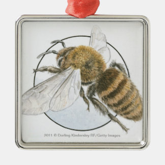 Illustration of European Honey Bee Square Metal Christmas Ornament