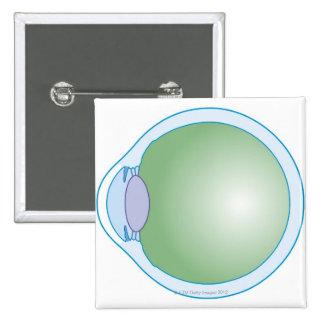 Illustration of Human Eye 15 Cm Square Badge