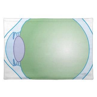 Illustration of Human Eye Placemats
