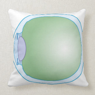 Illustration of Human Eye Pillow