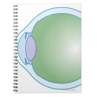 Illustration of Human Eye Note Book