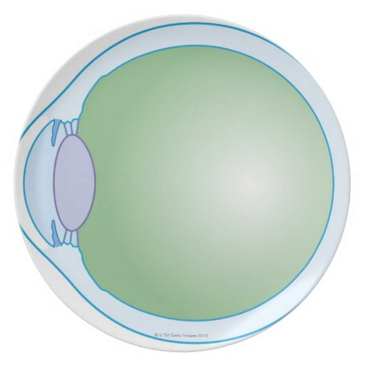 Illustration of Human Eye Dinner Plates