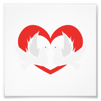 Illustration peace doves with heart art photo