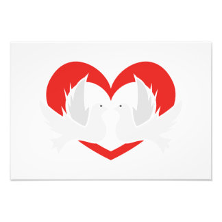 Illustration peace doves with heart photo print