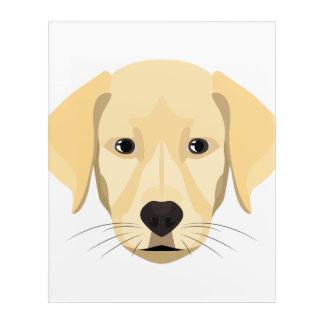 Illustration Puppy Golden Retriver Acrylic Print