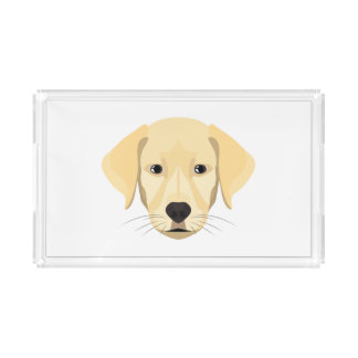 Illustration Puppy Golden Retriver Acrylic Tray