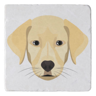 Illustration Puppy Golden Retriver Trivet
