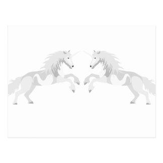 Illustration White Unicorn Postcard