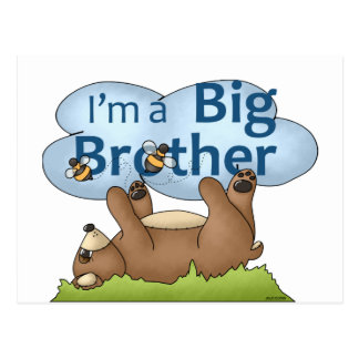 I'm a Big Brother bear Postcard