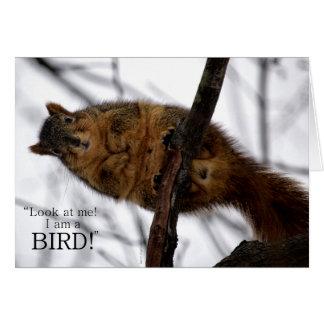 I'm a BIRD! Card