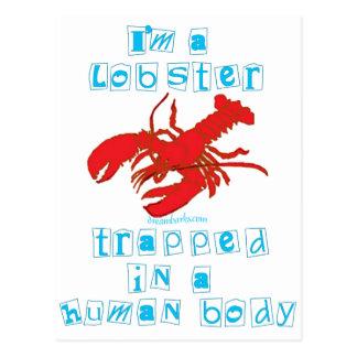 I'm a Lobster Postcard