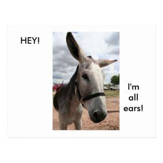 I'm All Ears Postcard