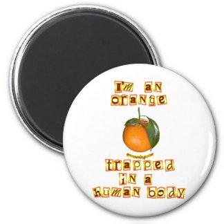 I'm an Orange Magnets