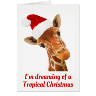 I'm dreaming of a Tropical Christmas | Ca Card