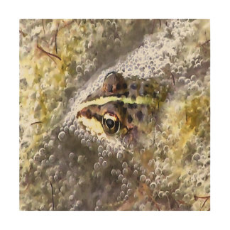 I'm Forever Blowing Bubbles Cute Frog Wood Wall Art
