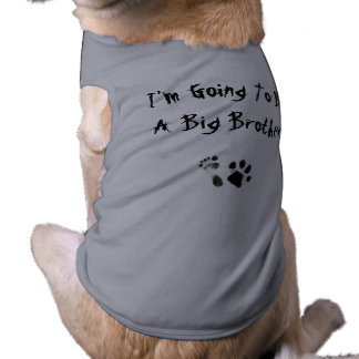 Im going to be a big brother - shirt