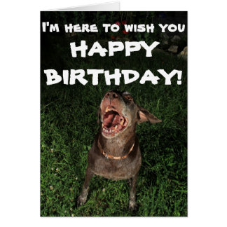 I'm Here To Wish You HAPPY BIRTHDAY Greeting card