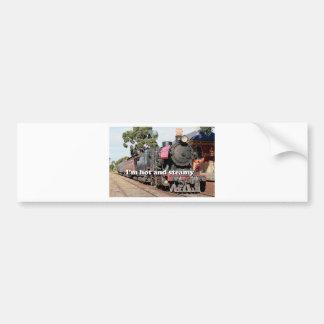 I'm hot and steamy: Goldfields steam locomotive Bumper Sticker